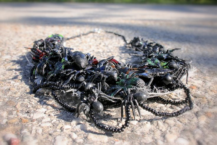 Abjekt. Spiders on a necklace, beauty or fear? Made by Isis Flote at Lund University, Industrial Design Bachelor, year 1.