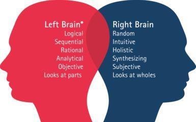 Psicologia - Hemisferios cerebrales