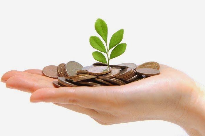 El capital semilla, conocido en ocasiones como financiación semilla, es un tipo de oferta de acciones en la cual un inversor adquiere una parte de un negocio o empresa.