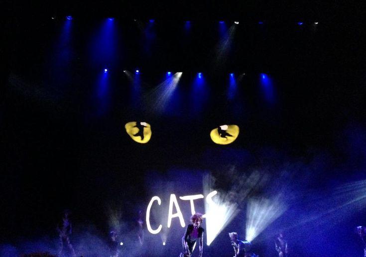 @LesNanasdPaname en direct du théâtre Mogador pour une soirée très MAOUW @CatsLeMusical, @StageFrance #CatsParis