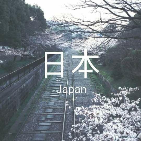 Para los que aman Japan