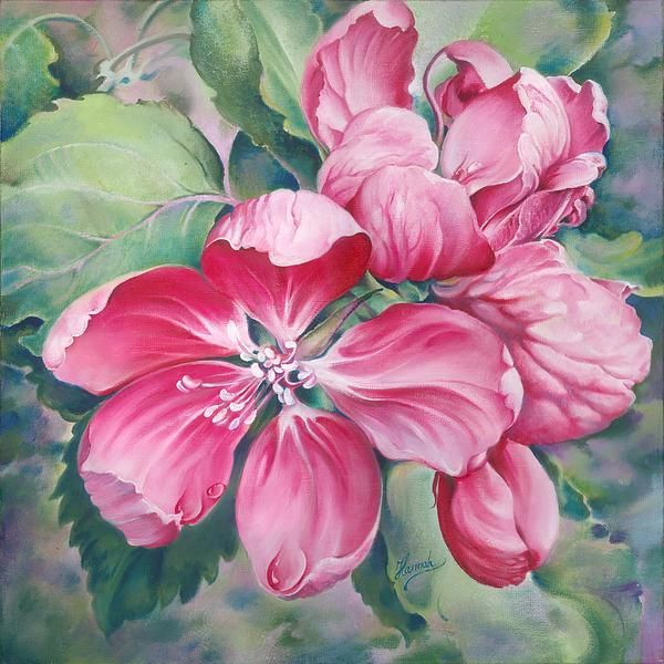 """Flower Of Crab-apple"" -Painting - Oil On Canvas by Anna Ewa Miarczynska"