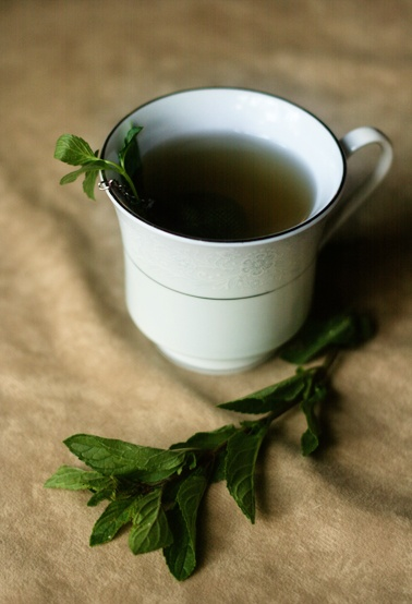 Fresh Peppermint tea with a wee bit of honey. SO delicious!