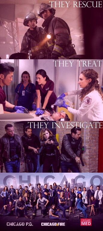 The rescue. They treat. They investigate.