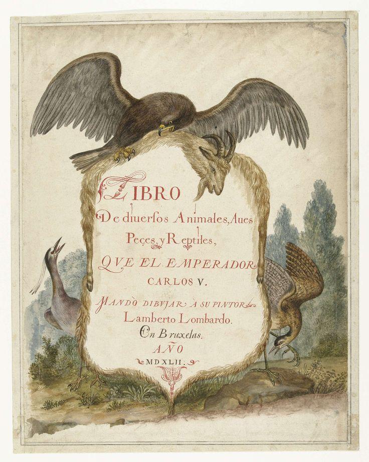 Anonymous | Cartouche opgehouden door een steenarend, kwak en roerdomp, Anonymous, c. 1585 | Cartouche van geitenvel, opgehouden door een steenarend (Aquila chrysaetos), kwak (Nyciticorax nyciticorax) en roerdomp (Botauris stellaris).