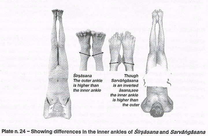BKS Iyengar showing differences in the inner ankles in Sirsasana and Sarvangasana