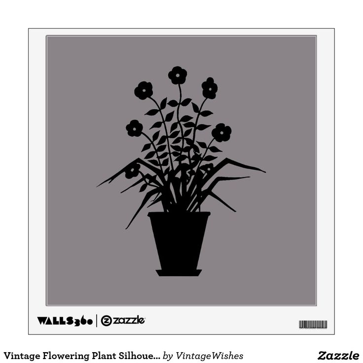 Vintage Flowering Plant Silhouette Custom Color Wall Décor - #vintagewishes #windywinters #zazzle