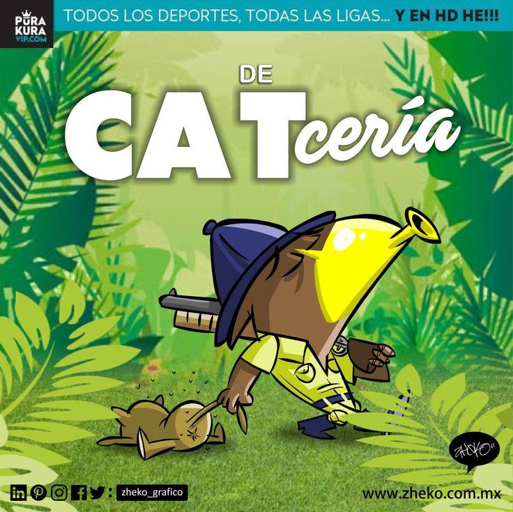 "#ElCartonDelDia para @purakuraweb ""DE CATCERÍA"" @clubamerica @PumasMX #LigaMx #PumasVsAmerica Zheko Caricaturista"