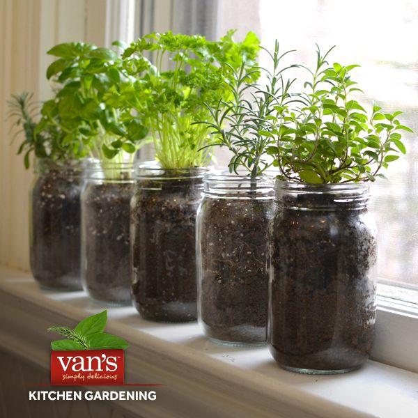 Herb Garden Ideas For A Balcony 50 best gardening goodness images on pinterest | gardening, garden