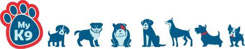 Zelf een halsband, hondenriem of tuigje voor je hond maken