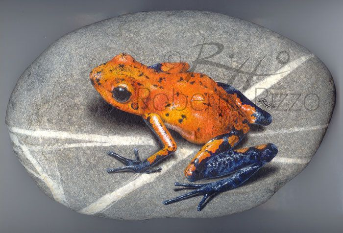 Dendrobates - acrylic on rock | Rock painting by Roberto Rizzo www.robertorizzo.com