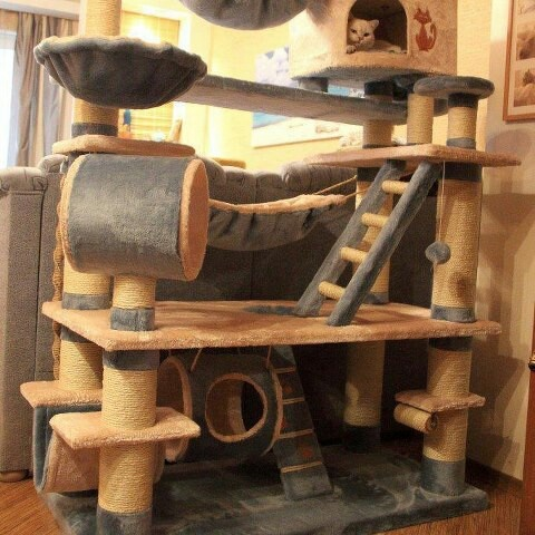 11 best cat playground images by sandra truong on for Diy cat playground