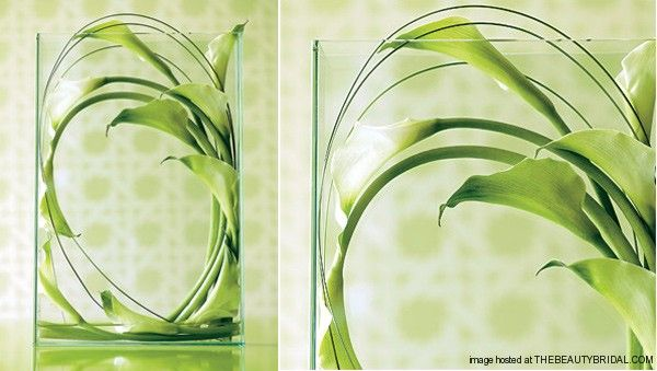 A great way to make an artful impact with just a few stems: Place loops of Green Goddess calla lilies and lily grass inside a clear, sleeve-like vase.