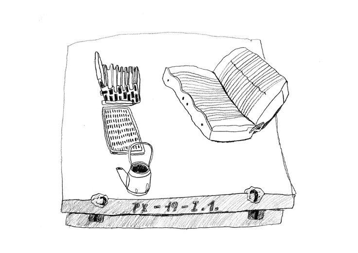 aninaillustration