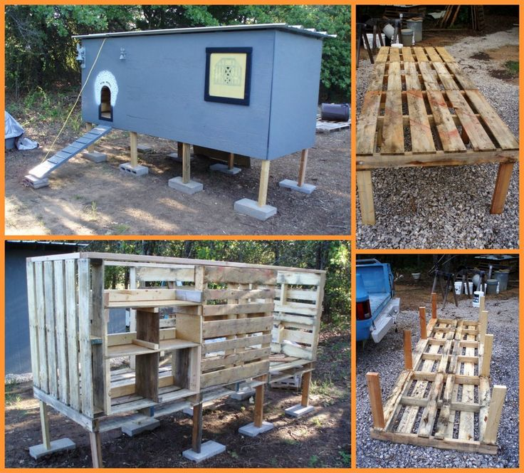 Building a chicken coop doesn't have to be expensive! This chicken coop made from repurposed pallets is a perfect example. View the full album of this project and learn how trash is turned into treasure at http://theownerbuildernetwork.co/ausz Are you on the lookout for pallets?