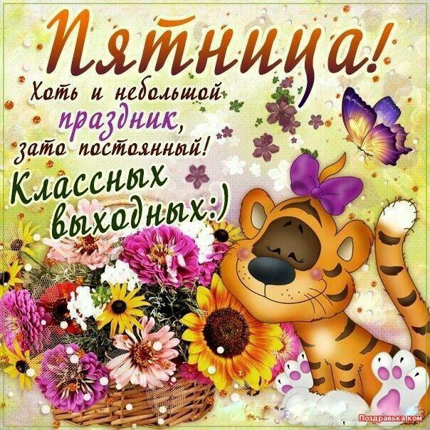 Картинки с пожеланием хорошего дня и настроения прикольные пятницы