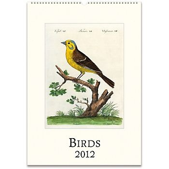 Art for bedroom. Bird calendar. : Birds Wall, Office, Gift, Source, Frames, Art, Wall Calendars, Products