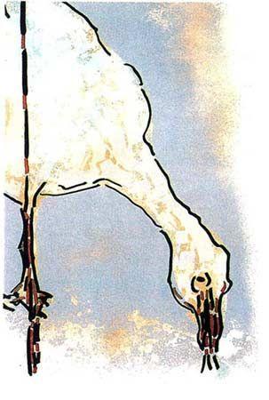"Jean Paul Riopelle, L'Oie du Nord, Lithographie, 30"" x 19"""