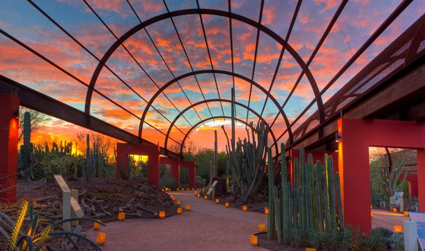 Desert Botanical Garden in Phoenix, AZ - Bet this would be great after a long day doing something more active!