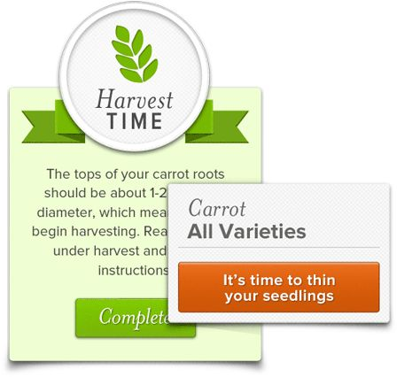 Sprout It:  enter zip code and get tips and info on herbs/veg that will grow in your area