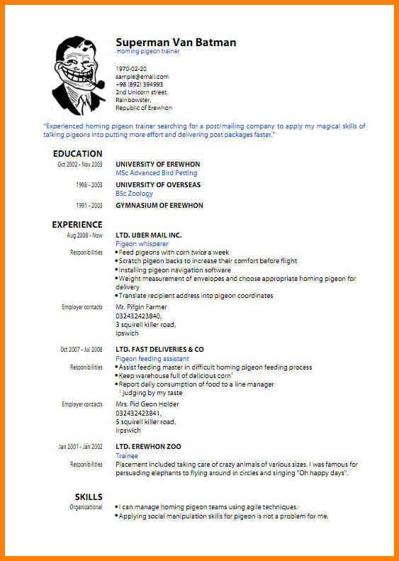 Best 25 Sample resume templates ideas on Pinterest   Sample resume  Sample resume cover letter