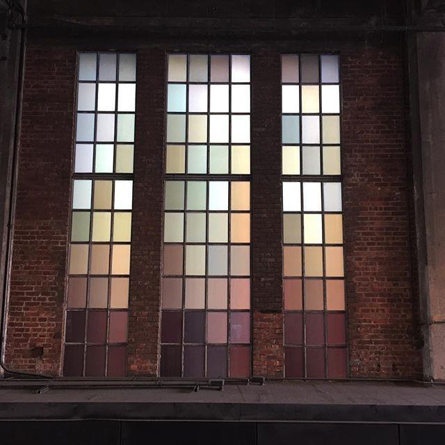 Window #nyc
