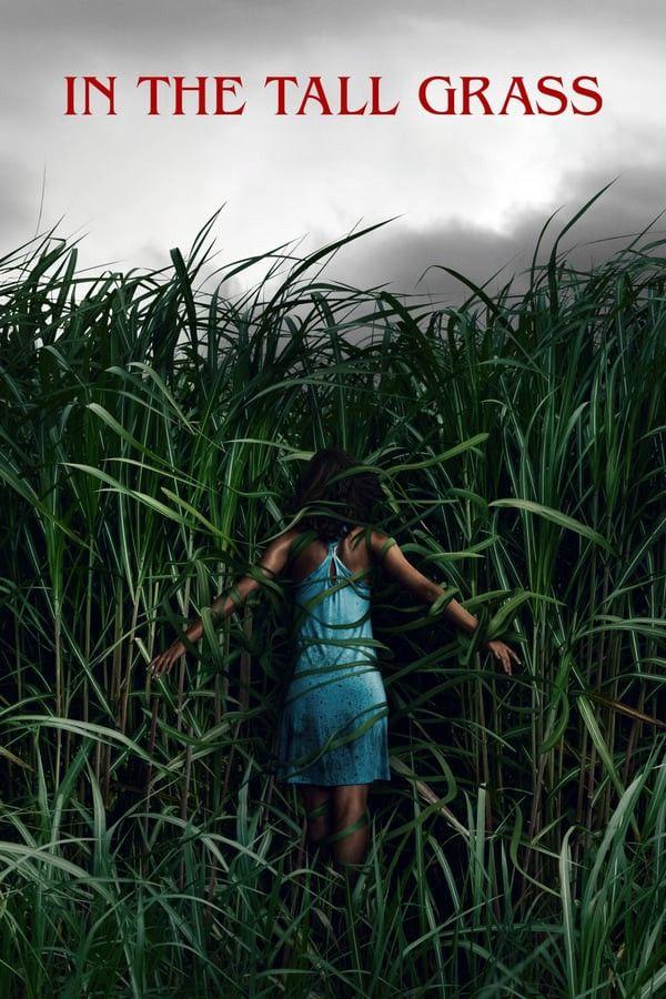 In The Tall Grass 2019 Film Good Movies Tall Grass