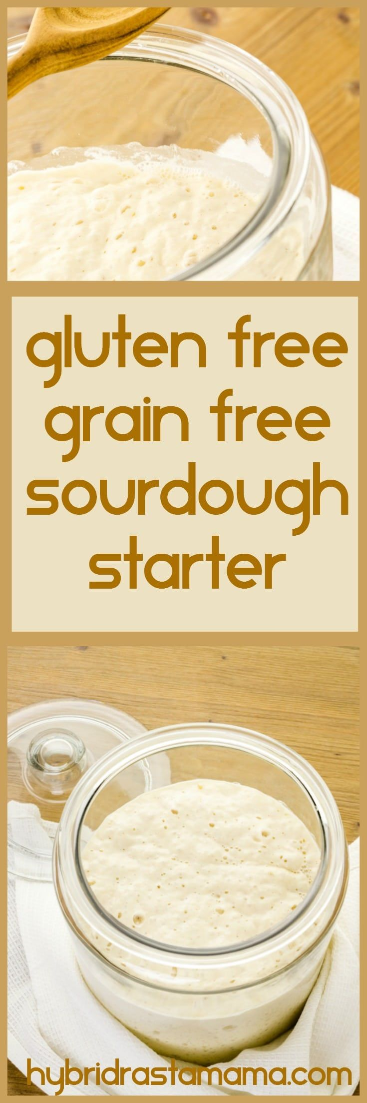 This Gluten Free, Grain Free Sourdough Starter is so easy anyone can make it. Plus it makes the perfect base for gluten free, grain free sourdough bread. Grab the recipe from HybridRastaMama.com