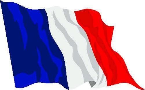 Mejora tus conocimientos del idioma francés #onlinecourses #cursosonline #idiomas #languages