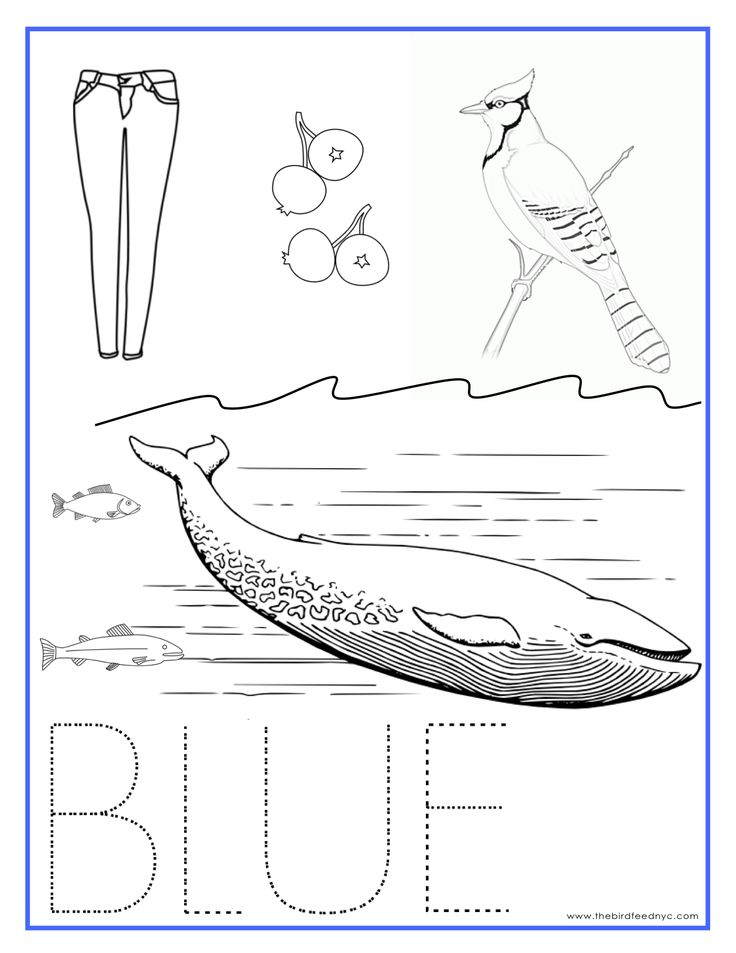 blue color activity sheet repinned by totetudecom - Color Activity For Preschool