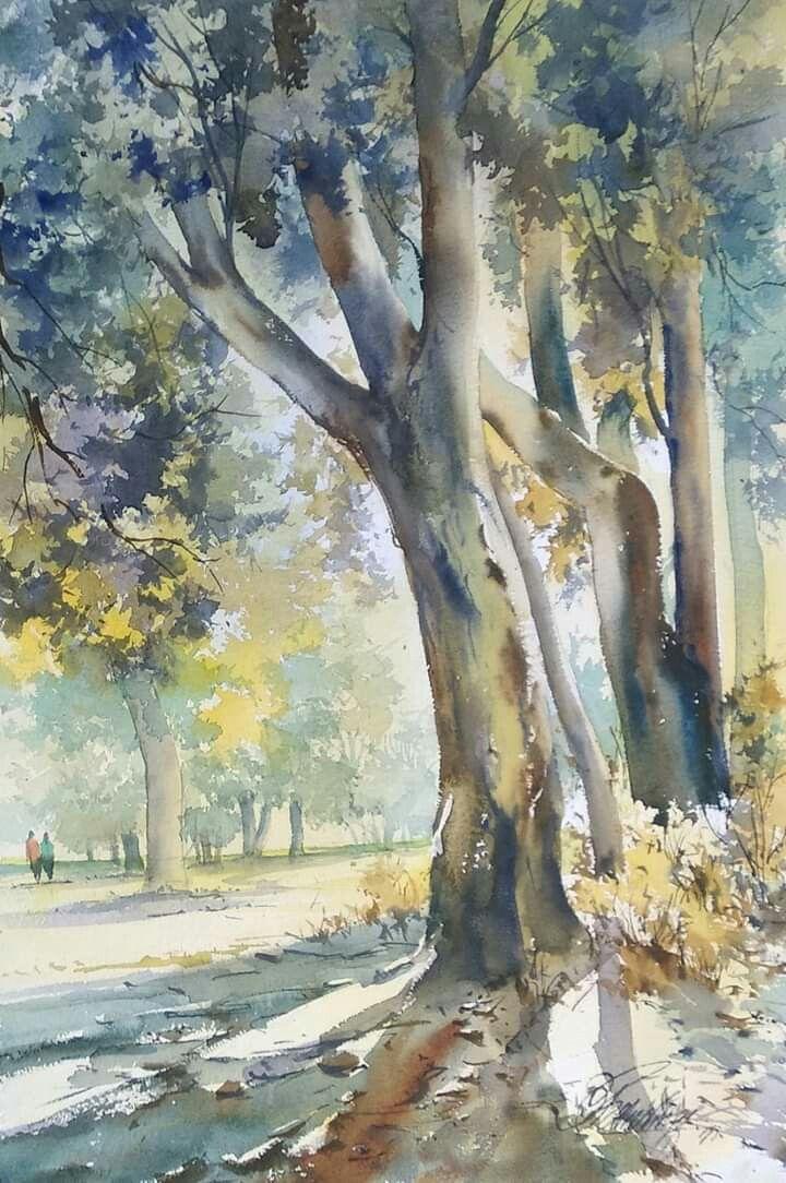 Pin By Jairo Gonzalez On Acuarelas Watercolor Landscape Watercolor Art Flower Sketches