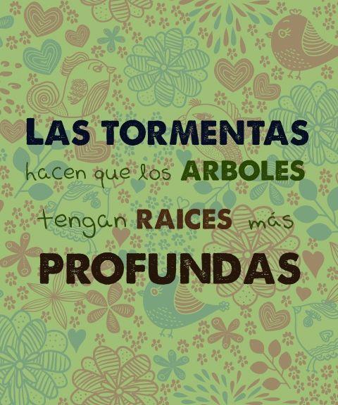 Nadie te va a golpear tan fuerte como la vida; pero no se trata de qué tan duros sean los golpes, se trata de qué tan duro te golpeen y sigas adelante, de lo mucho que puedas soportas y aún así seguir adelante. ¡Eso hacen los ganadores! #LaJirafa #CUU #Chihuahua http://lajirafa.com.mx/