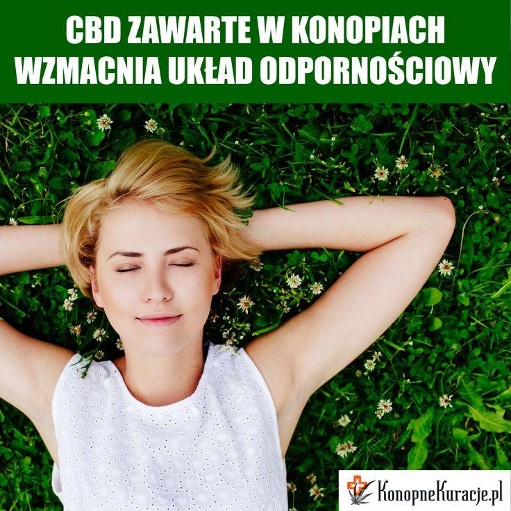 Skutecznie zadbaj o swoje zdrowie.  #cbd #olejkicbd #olejekcbd #olejcbd #konopie #konopnekuracje #konsultacje #zdrowie #kuracja #depresja #odporność #stress #energia #zdrowie #sklep #konsultacje #konopnaherbata #warszawa #polska #Facebook