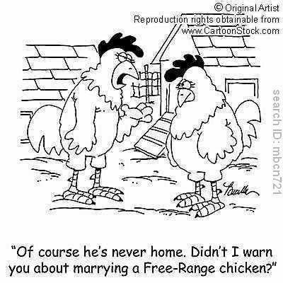 Chicken humor...