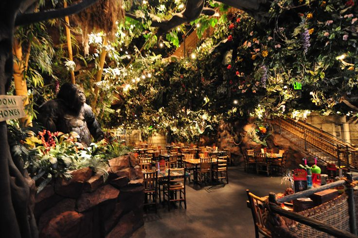 Rain Forest Cafe (Many Locations)  fun to go with kids!