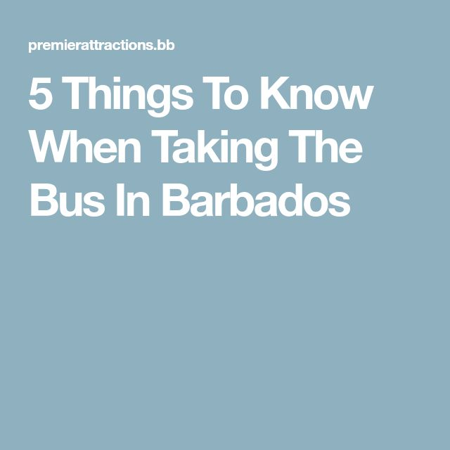 5 Things To Know When Taking The Bus In Barbados