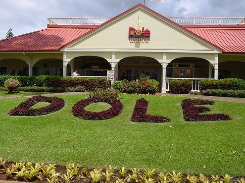 Dole Pineapple Plantation (Oahu, Hawaii)