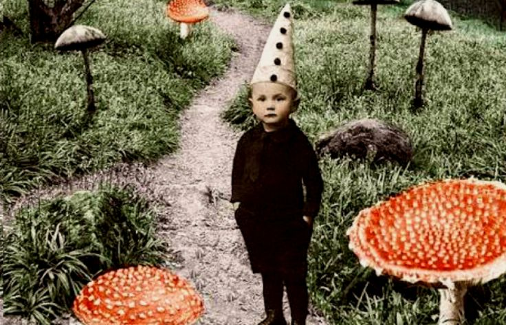 Hermann Hesse – Ωριμάζοντας γινόμαστε όλο και νεότεροι