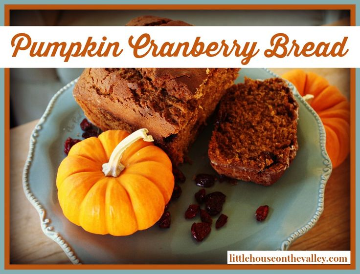 Pumpkin and cranberries are a match made in heaven. The mixture of sweet and tart are divine, and this pumpkin cranberry bread is no exception. Seriously this is one of the best fall breads I have ever made and eaten.