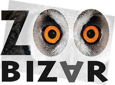 Drenthe: Zoo Bizar dierentuin