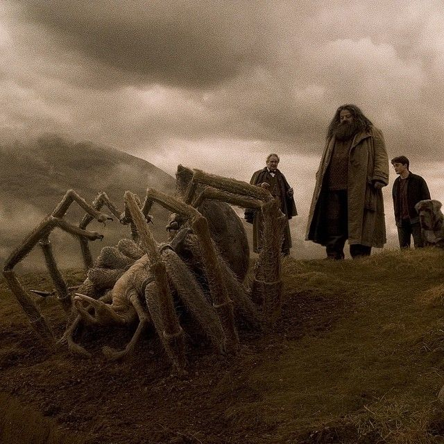 """""""They made an exact replica of what a spider would look like, right down to the hairs in the legs, and the mouth is one of the most repulsive things you've ever seen in your life. It's just about your worst nightmare come true."""" – Robbie Coltrane #HarryPotter"""