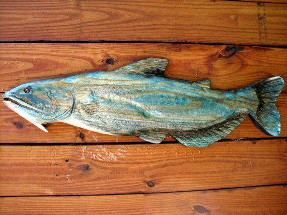 Ideas about blue catfish on pinterest aquaponics