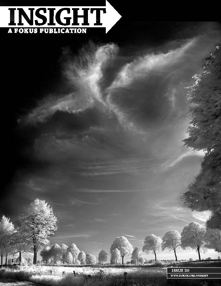 read this issue: http://en.calameo.com/read/00100991972f50012c738    The cover of issue 30 was a photograph of clouds by Michael Laukeninks using infrared 950nm.The Phoenix theme of this issue embodies bonds, changes, destruction, emancipation and many other things. The contributing artists for this issue all give their take on what the Phoenix means to them. One artist shares her story of how being diagnosed with Multiple Sclerosis at the prime of her life caused her to be reborn.