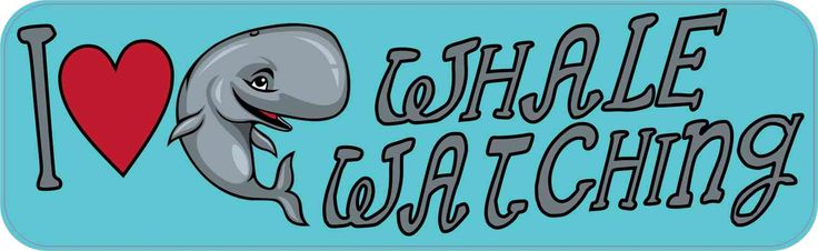 10in x 3in I Love Whale Watching Bumper Sticker Vinyl Animal Hobby Decal