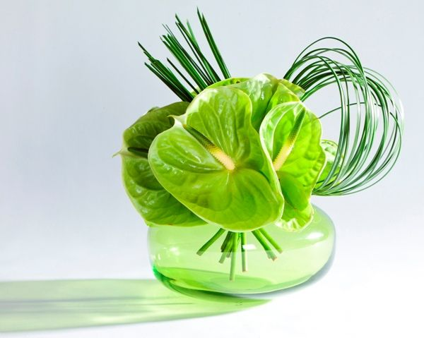 green anthurium and steel grass contemporary floral arrangement
