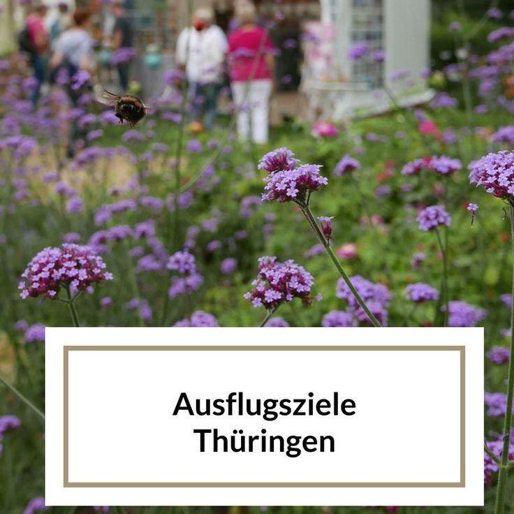 Thüringen hat viele abwechslungsreiche Ausflugsziele. Habt ihr Lust auf einen unterhaltsamen Ausflug am Wochenende in Thüringen?