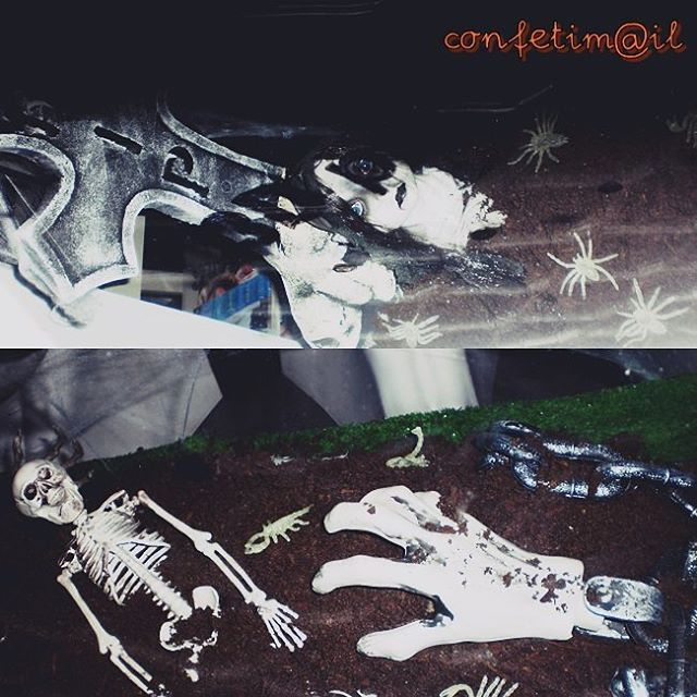 Escaparate terrorífico que nos encontramos ayer al volver del cine. ¿Cómo fue vuestra noche? La nuestra genial :) La película fue una maravilla. #halloween #confetimail #cine #película #movie #miedo #terror #calaveras #skulls #lápida #tombstone #bones #huesos #spiders #arañas #miedos #creepy #spooky