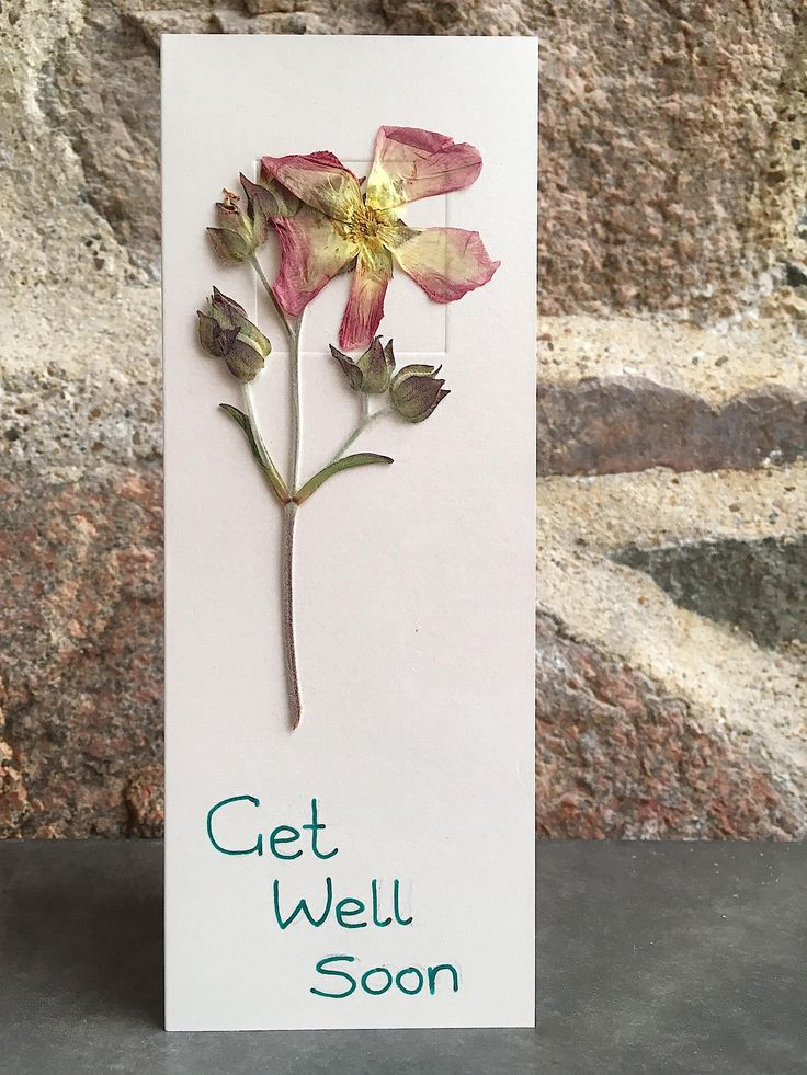 Get Well Soon Card / Pink Flowers Card / Empathy Card / Flower Art / Greeting Card - Cloecards by CloeCards on Etsy