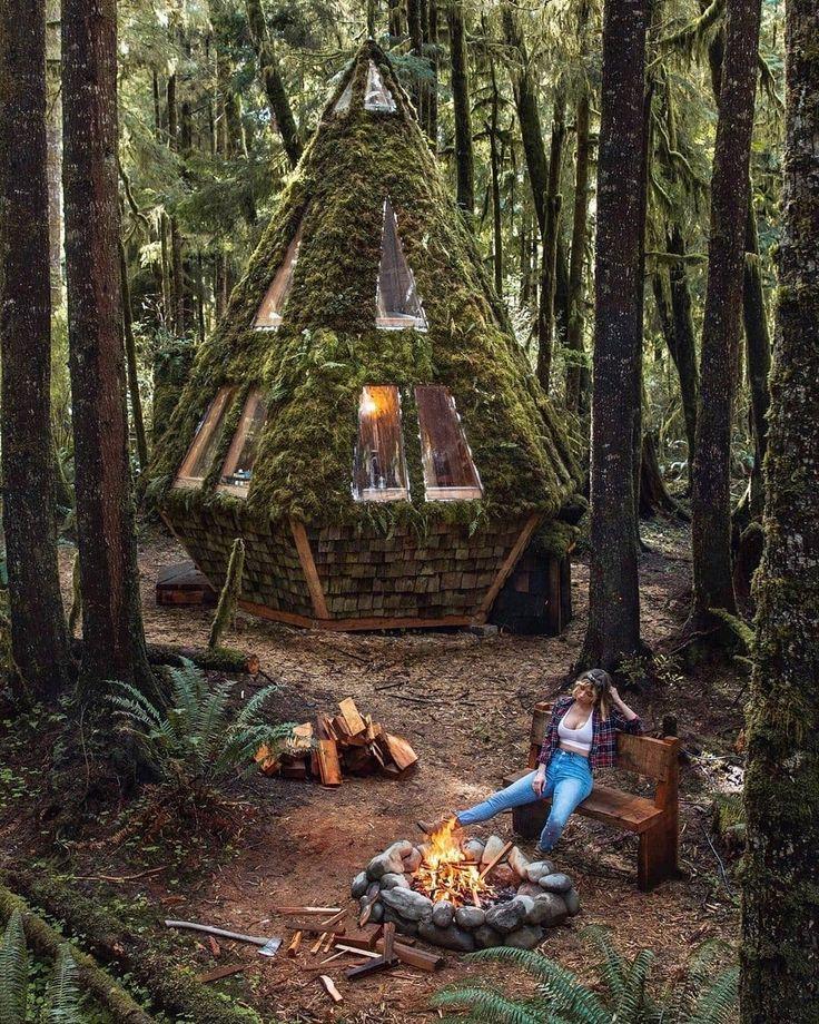 Шалаш в лесу картинка для