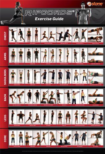 Ripcords Exercise Guide Poster | Resistance Band Workout Chart:Amazon:Sports & Outdoors